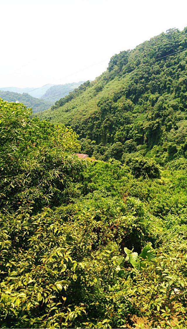 至善景觀土地,台北市士林區至善路三段